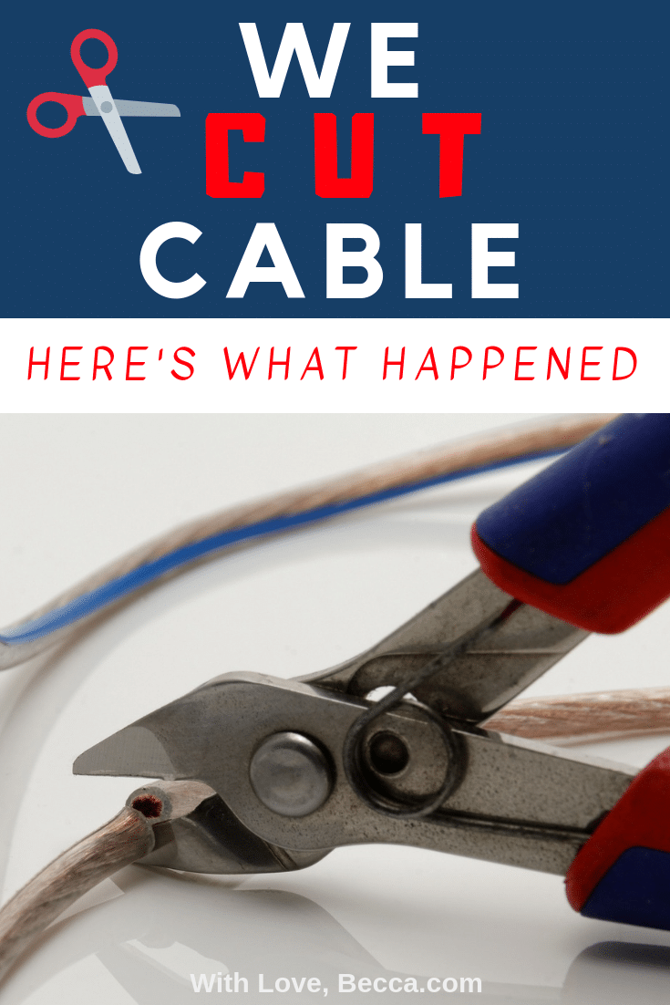 Thinking about cutting cable in your house? Read what happened when a family of four cut cable first!