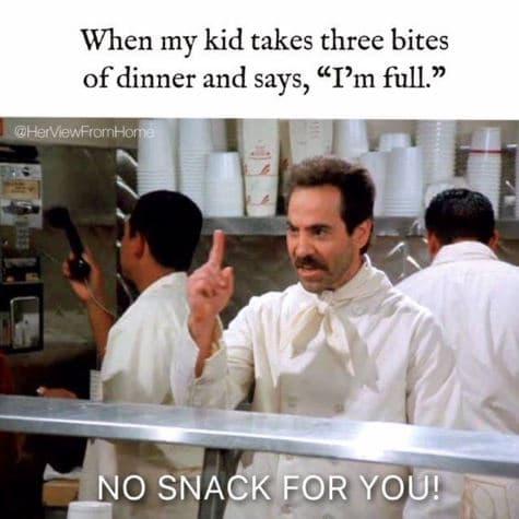 Seinfeld Parenting Meme. Funny 90's kid memes.