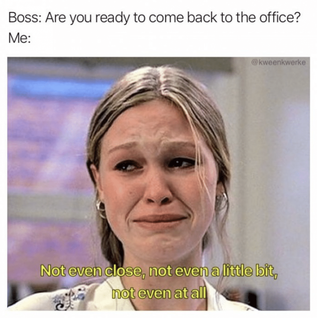 10 Things I Hate About You Back to the Office meme