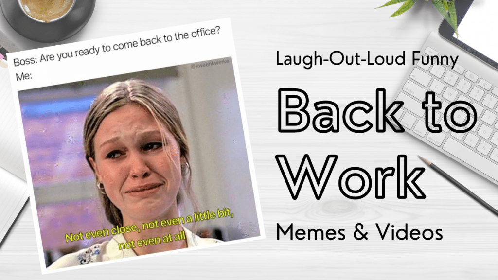 Laugh-Out-Loud Funny Back to Work Memes & Videos